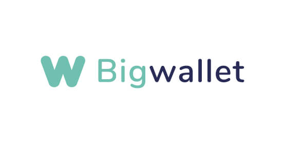 big-wallet-logo